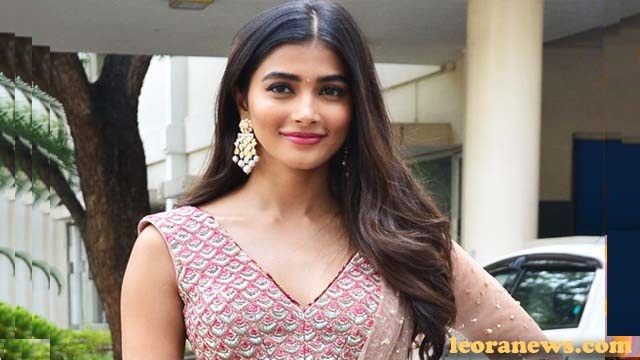 Pooja Hegde Profile Height Age Family Affairs Wiki Biography More